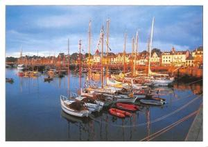 France La Trinite Sur Mer, The Marina's Forest of Masts Yacht Boats