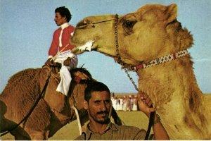 PC CPA SAUDI ARABIA, AFTER A CAMEL RACE, Modern Postcard (b22471)
