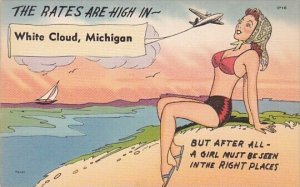 Humour The Rates Are High In White Cloud Michigan