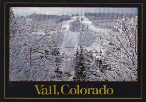Colorado Vail Winter Scene