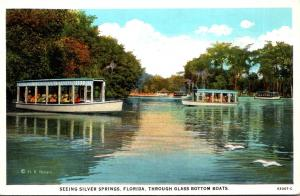 Florida Silver Springs Glass Bottom Boats Curteich