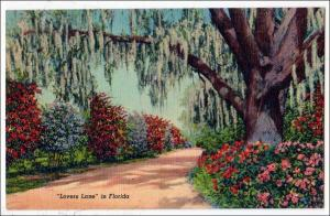 Lovers Lane in Florida
