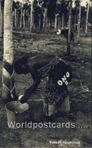 Malaya, Malaysia Rubber Collecting Rubber Collecting Real Photo