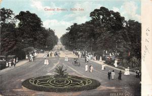 Detroit Michigan~Belle Isle-Central Avenue~People~Carriage~Beautiful Garden~1907