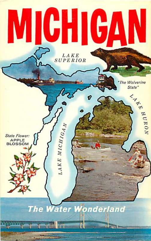 Battle creek michigan education association camp st marys lake greetings from michigan mi the wolverine state map postcard m4hsunfo