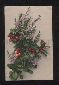 068427 Bouquet w/ COWBERRY Style KLEIN vintage Photo PC