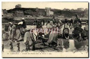 Old Postcard Cancale oysters Labor in oyster farming Parks TOP