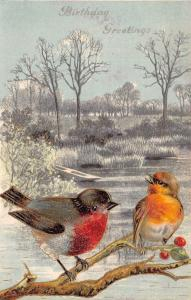 Red Breast Birds on Holly Berry Branch~Rowboat on Creek Bank~Emboss~Germany