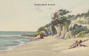 BERMUDA, 30-40s; Gardner Beach
