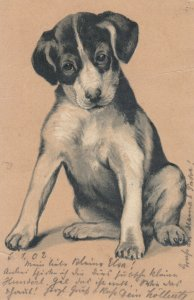 Sitting Dog , 1903