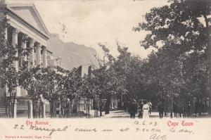 CAPE TOWN , South Africa , PU-1903; The Avenue