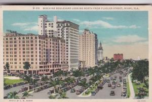 Florida Miami Biscayne Boulevard Looking North From Flagler Street 1933 Curteich