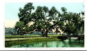Louisiana New Orleans Audubon Park Washington Oak Detroit Publishing