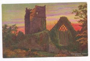 Muckross Abbey, Killarney, Ireland, 00-10s
