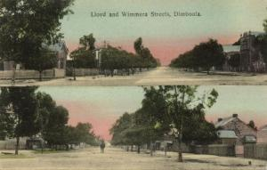 australia, DIMBOOLA, Victoria, Lloyd and Wimmera Streets (1910s) Bird Seed Ad