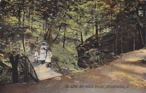 Ohio Steubenville The Gorge and Rustic Bridge 1908 Rotograph