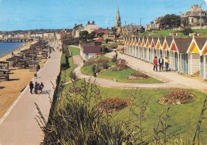 Dorset Postcard Greenhill Gardens, Weymouth by J. Salmon Ltd #607