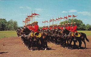 The Famed Royal Canadian Mounted Police Drilling, Canada, 1940-1960s