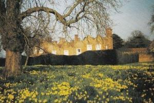 Liscombe Park Buckinghamshire Bucks Easter Postcard