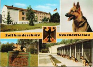 Zollhundeschule Neuendettelsau Germany Dog School German Shepherd Postcard D58