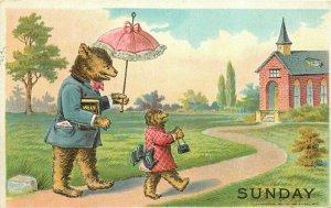 Anthropomorphic Dressed Bears Sunday Comic Humor 1907 Postcard 20-3104