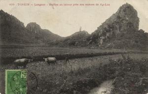 CPA Vietnam Indochine -  Tonkin - Longson - Buffles au labour (84931)