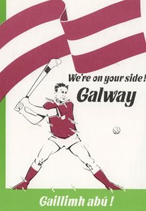 Galway Hurling Final Irish 1988 Advertising Sports Postcard