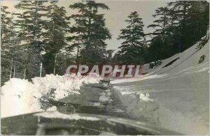 Postcard Modern Snow