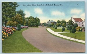 Postcard DE Rehoboth Beach Delaware View Along Silver Lake Drive c1950s X5