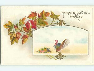 Divided-Back thanksgiving TURKEY AND COLORED LEAVES r3797