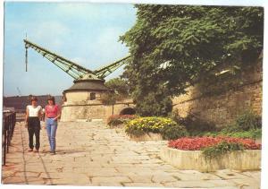 Germany, Würzburg, Junges Leben am Alten Kranen, marked unused Postcard