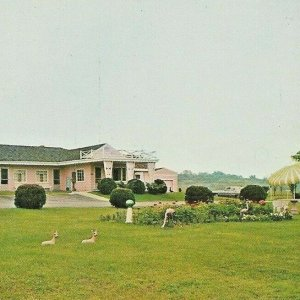 1969 Victoria Motel Libson Ohio East Liverpool US 30 Deer Lawn Ornaments Gazebo