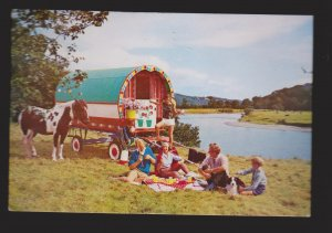 Holidaying In Ireland In Horse Drawn Gypsy Caravan - 1960s - Used