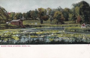 STARVED ROCK, Illinois, 1901-1907; Pond, Scene From Starved Rock