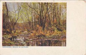 Berkshire Brook in Autumn, England, United Kingdom, PU-1907