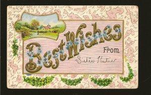 Postmarked 1910 Benson Nebr. Best Wishes Embossed Color Postcard