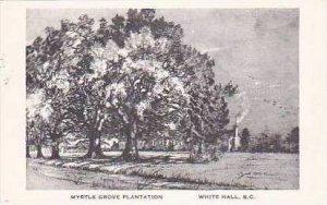 South Carolina White Hall Myrtle Grove Plantation Artvue
