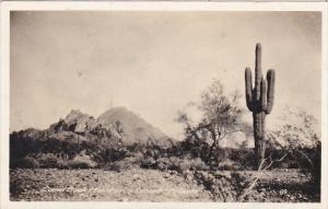Arizona Camelback Mountain and Desert With Cactus Real Photo