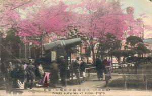 Japan Cherry Blossoms At Kudan Tokyo 03.82