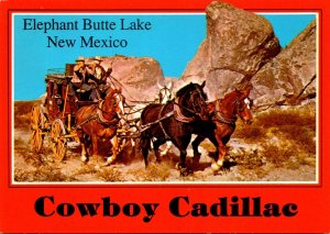 New Mexico Elephant Butte Lake Cowboy Cadillac