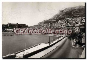 Modern Postcard Principality of Monaco View the Condamine and the Prince's Pa...