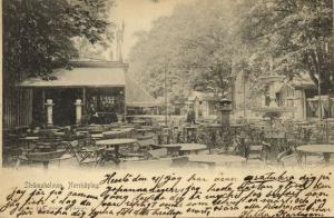 sweden, NORRKÖPING, Strömsholmen (1905) Stamp