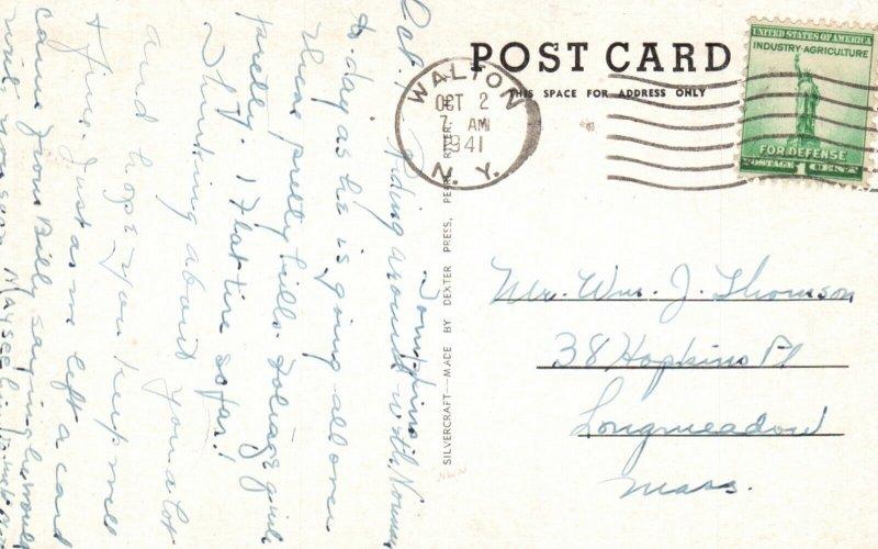 Walton, New York, NY, Bird's Eye View, 1941 Antique Vintage Postcard g2039