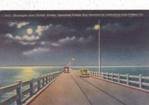 Florida Tampa Moonlight Over Candy Bridge Spanning Tampa Bay Between Saint Pe...
