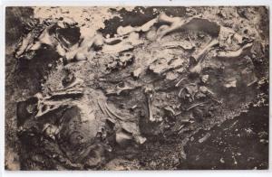 Fossil Bones - In Rancho La Brea Pit
