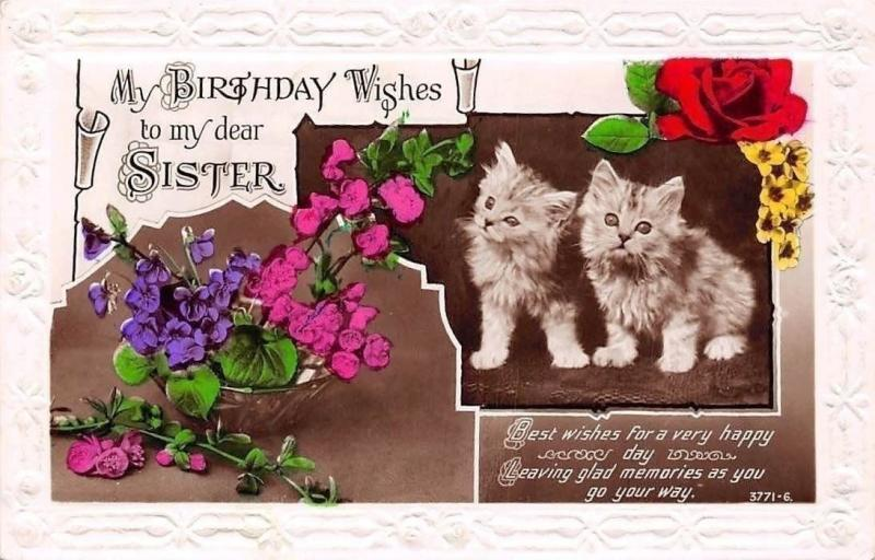 Embossed My Birthday Wishes To Dear Sister Violets Rose Kitten Cats HipPostcard