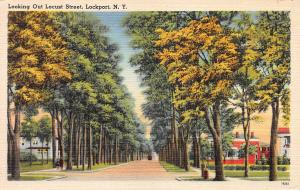 Looking Out Locust Street, Lockport, New York, Early Postcard, unused
