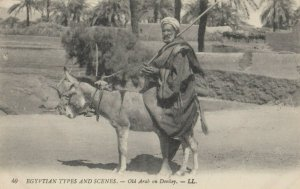 EGYPT , 00-10s ; Old Arab on Donkey
