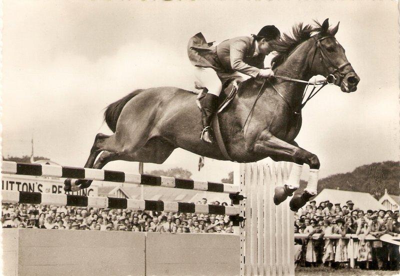 Pat Smythe jumping on Prince Hal  Modern English Postcard. continental size