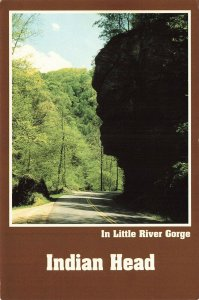 Postcard Head along Little River Tennessee Unposted VPC8.